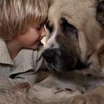 Mãe cria série de fotos retratando a convivência de seus filhos com animais