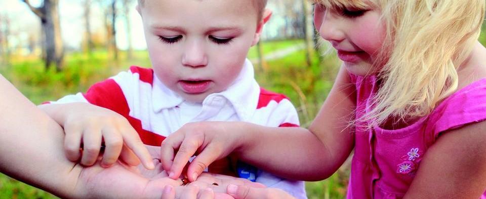 DESENVOLVIMENTO INFANTIL – Dos 4 aos 6 anos: conquistando o mundo!